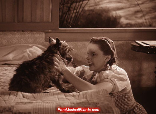 toto-returns-home-to-dorothy-in-the-wizard-of-oz-1939-5.jpg