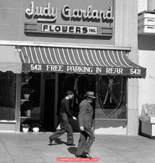 Judy Garland Flowers Inc. in Los Angeles