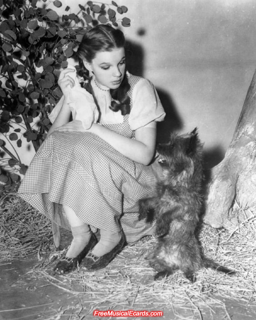 Publicity still of Judy Garland as Dorothy with Toto on The Wizard of Oz set