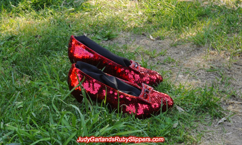 Bow on Judy Garland's ruby slippers