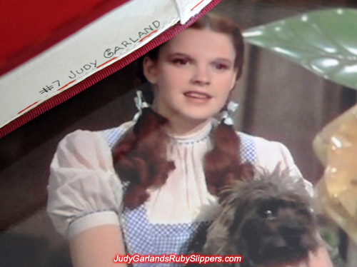 #7 Judy Garland inside Judy Garland's ruby slippers
