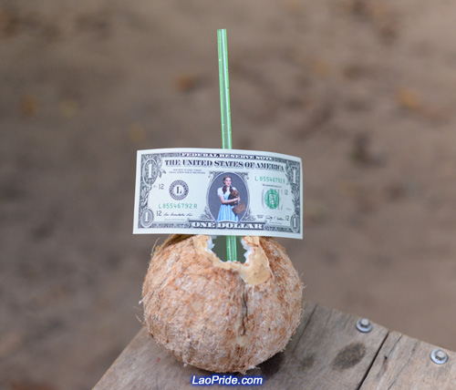Fresh coconut juice is a healthy drink in Laos