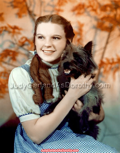 Portrait photos of stunning beauty Judy Garland as Dorothy