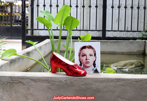 Stunning Judy Garland as Dorothy's finished right shoe